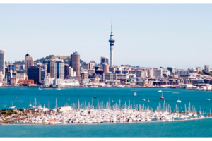 A Guide to Serviced Offices in Auckland