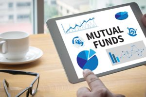 Who should invest in large cap mutual funds?